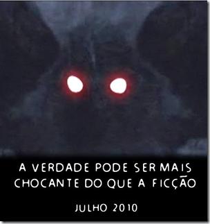 "Ad do post ""Homem-Mariposa"" (Foto: arquivo)"