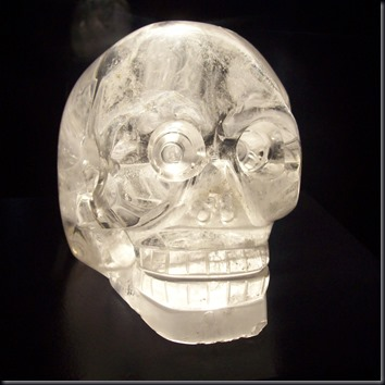 Crânio de Paris (Foto: Wikimedia)
