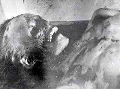 Cadáver de Zolotarev