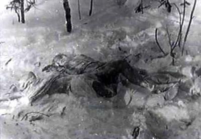 Dois corpos foram encontrados junto a restos de uma fogueira sob uma árvore